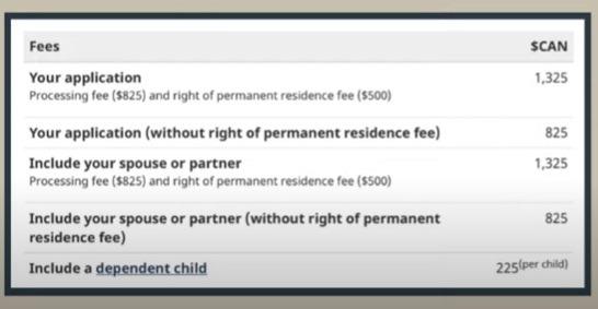 EE ITA fee